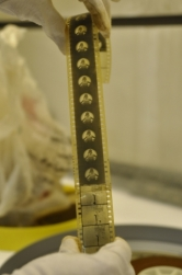 Stage 2 film strip