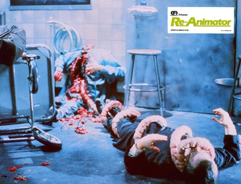 The finale of Re-Animator, in which a re-animated large intestine erupts from Dr. Hill's body and wraps itself around Herbert West.